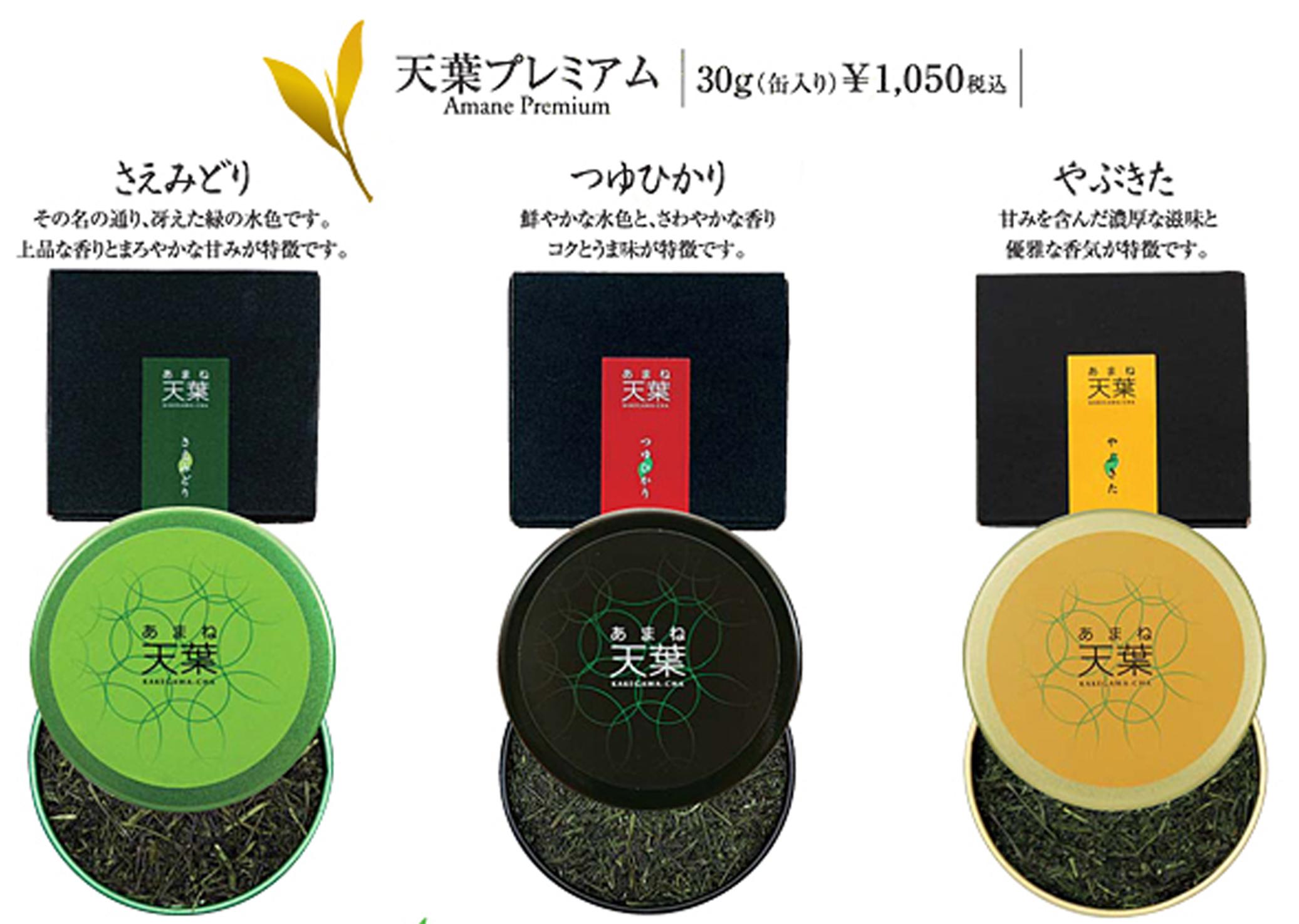 献上されたのは掛川ブランド「茶天葉(あまね)ファーストプレミアム」